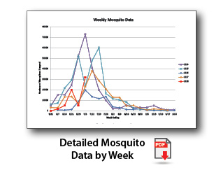 Click here for detailed mosquito data by week