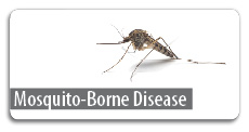 Click here for mosquito-borne disease information