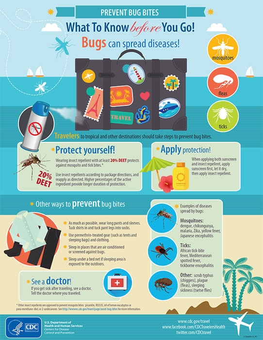 Infographic about preventing bug bites