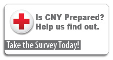Preparedness Survey